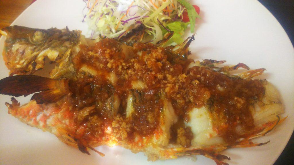 魚マバタ3