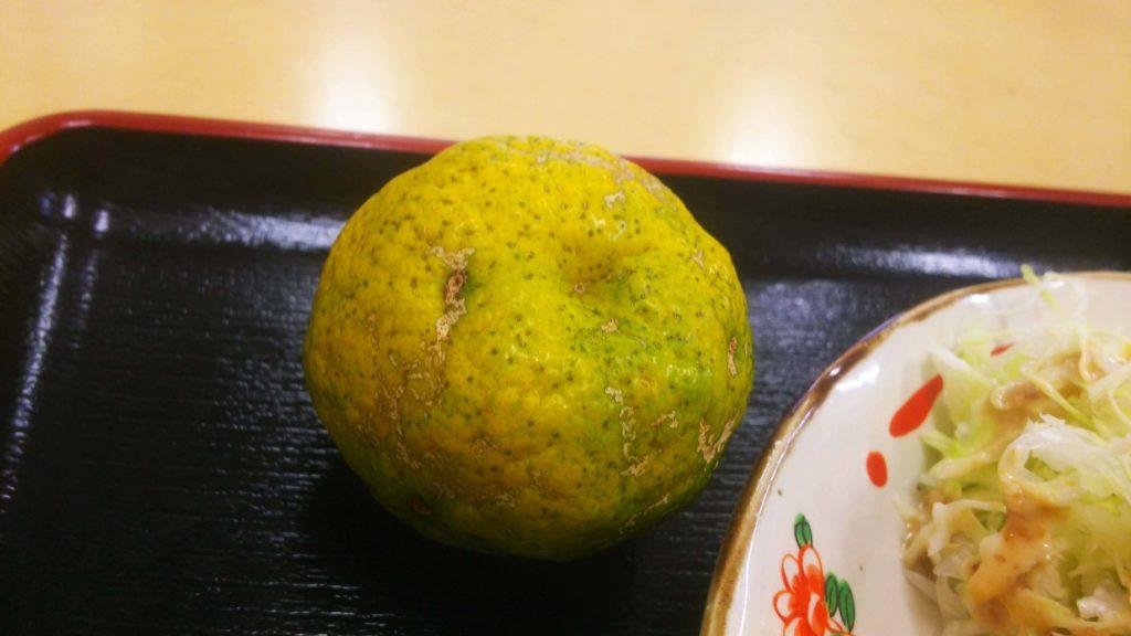 武ちゃんチキンカツ10